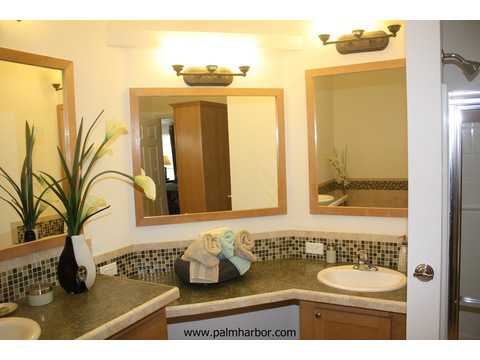 Glamor master bath - The Mt. Bachelor 5V348D6, Palm Harbor Homes