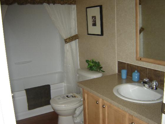 Wonderful Guest Bathroom