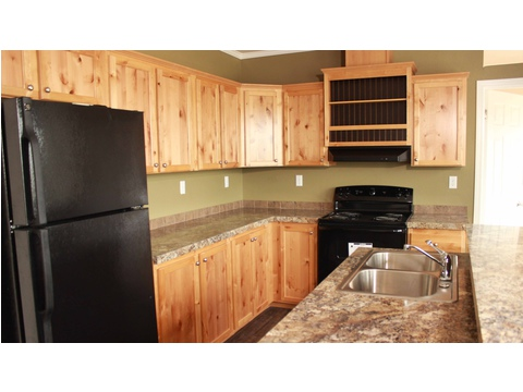 Move-in ready home in Pine Trace Community, Houston, TX - spacious kitchen