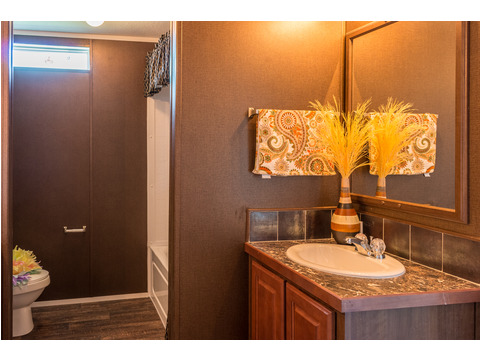 Well-appointed guest bath in the The Pecan Valley T360G5 or 30603P, 3 Bedrooms, 2 Baths, 1,800 Sq. Ft., by Palm Harbor Homes