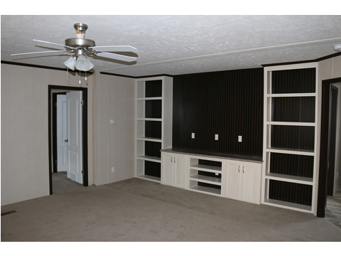 HUGE built in entertainment center and shelving in the living area
