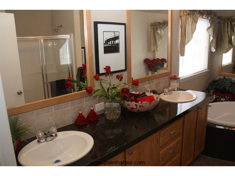 Standard master bathroom - The Frontier 4P4S100, Palm Harbor Homes