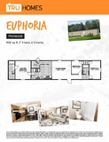 Euphoria  TRU Mobile Affordable Clayton Palm Harbor Fleetwood Cavco